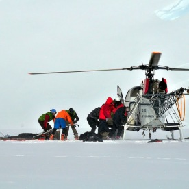 """10. Jeff and other Rangers performing a rescue on the """"Denali Lama."""""""